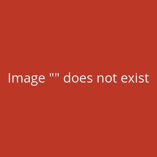 1000 Flyer Din A6 Mit Ausgestanzter Visitenkarte